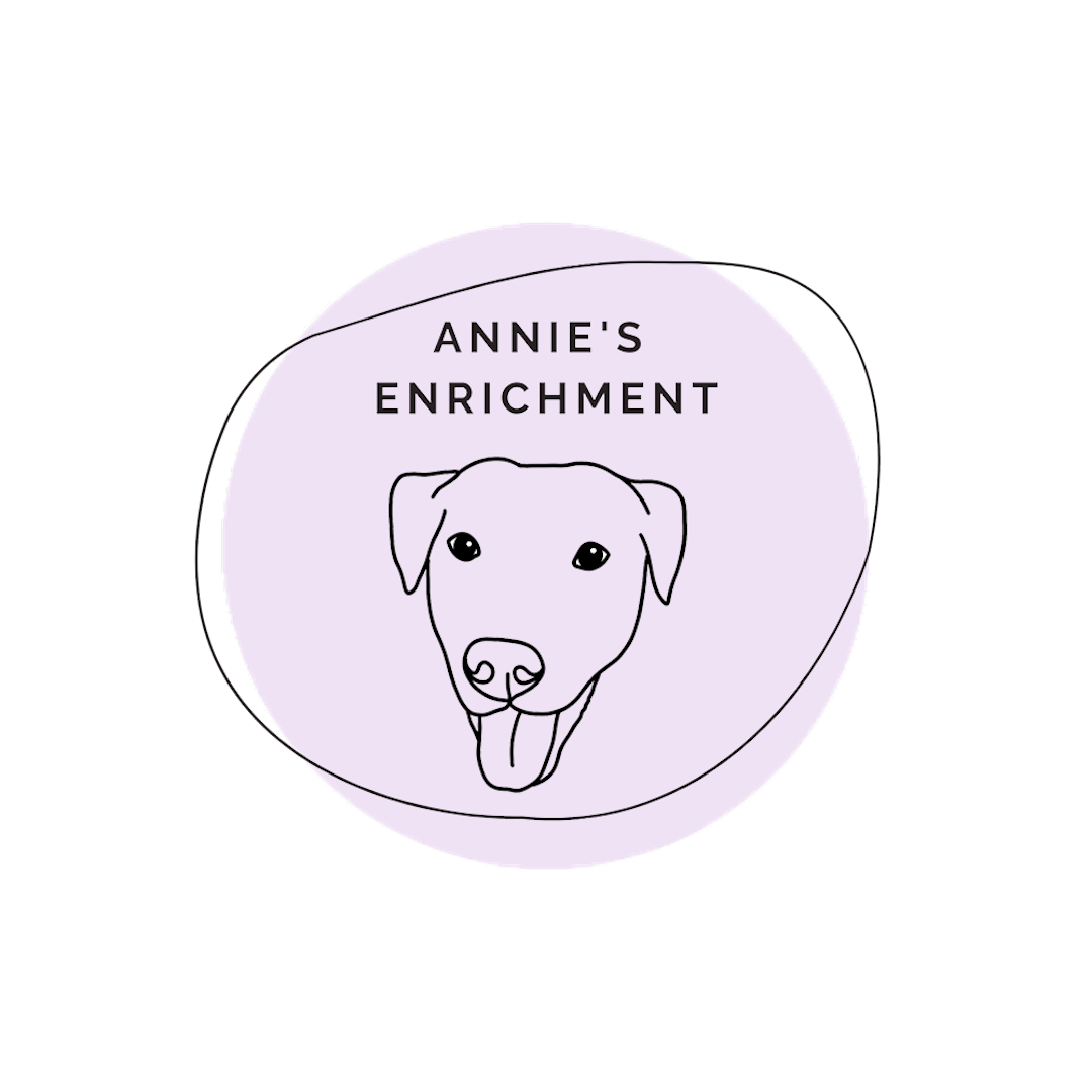 Annie's Enrichment Logo