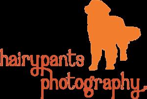 Hairpants-Logo-e1486367818763